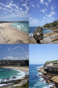 Bondi to Coogee Portrait