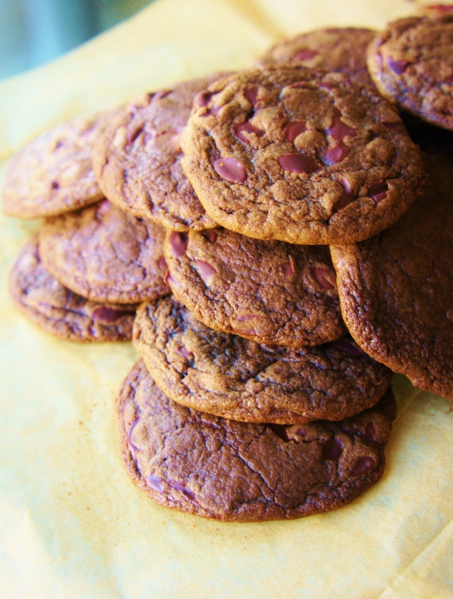 Double Chocolate Chip Cookies | Close Encounters of the Cooking Kind