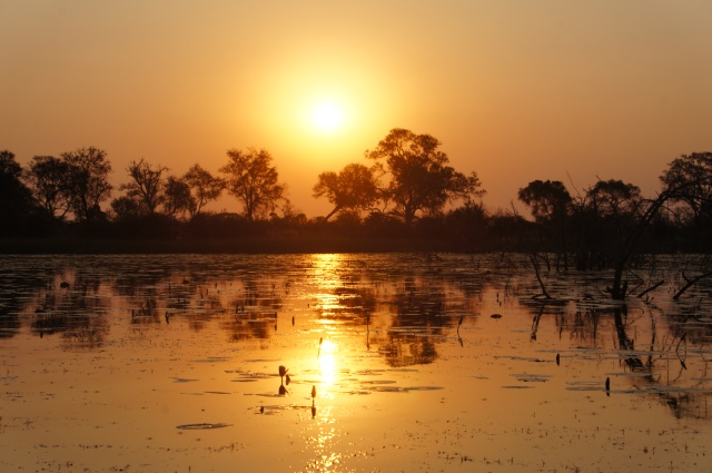 Sunset, Okavango Delta, Botswana | Close Encounters of the Cooking Kind